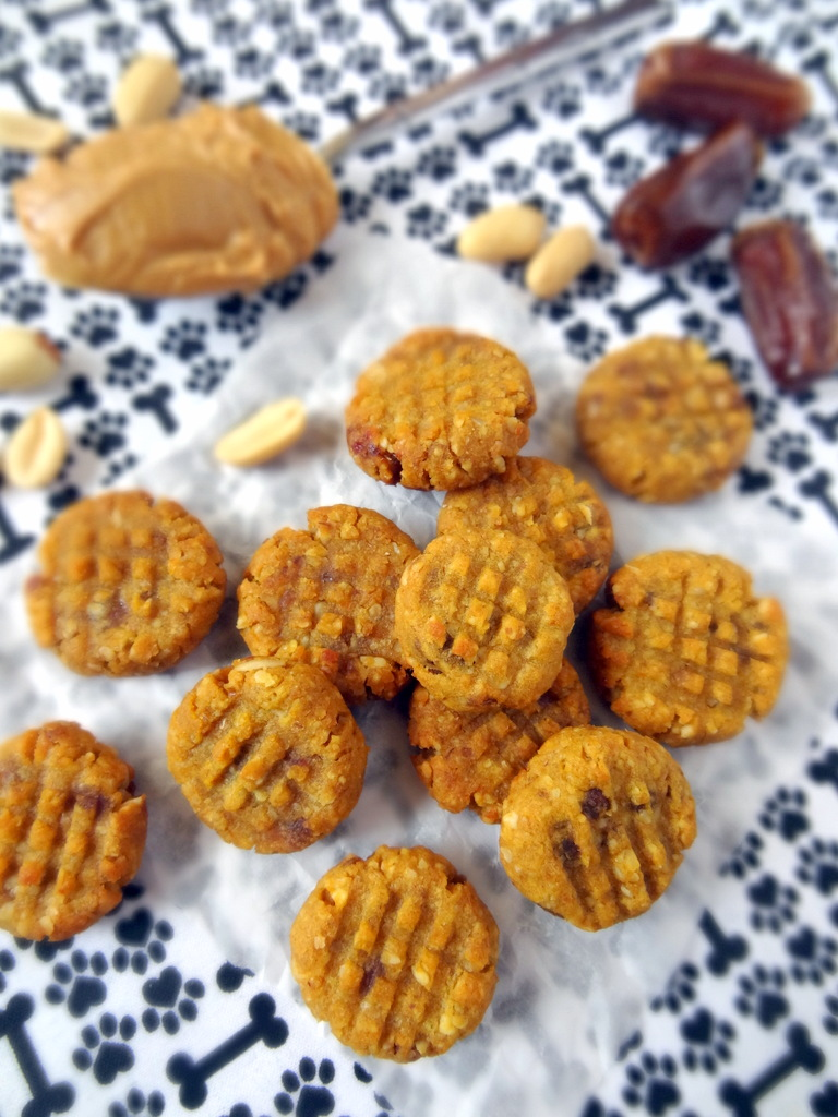 how to make pumpkin cookies for dogs